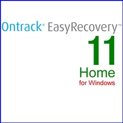 Ontrack EasyRecovery 11 Home for Windows 通常版(WIN)