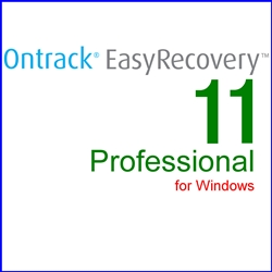 Ontrack EasyRecovery 11 Professional for Windows 通常版(WIN)