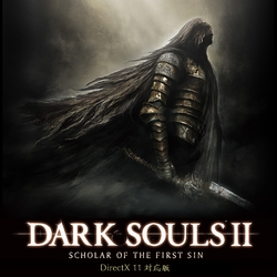 DARK SOULS II: SCHOLAR OF THE FIRST SIN (DirectX 11対応版)(WIN)