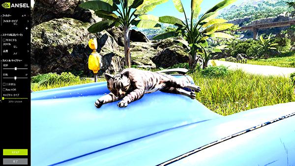 ボンネットの上でお昼寝中の猫が!
