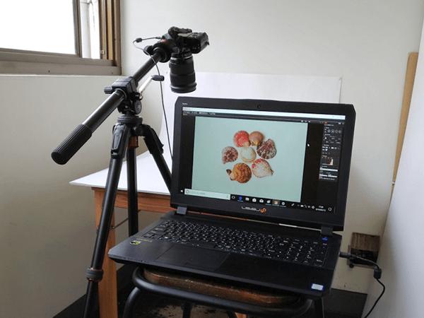 接続してソフトウェアを立ち上げるだけでカメラの画像が表示された