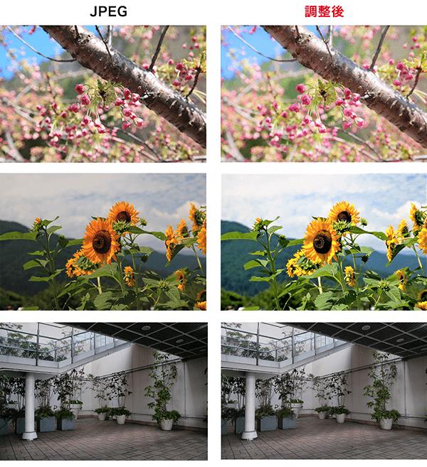 左:カメラがJPEG保存した画像。縮小画面ではあるが、ぱっと見は、悪くない印象。右:RAW現像をした画像。細かな部分で確実に改善されている。