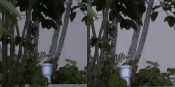 左:カメラがJPEG保存したもの右:「色にじみ」補正をし、RAW現像をしたもの。歪曲補正もしているため、周辺は自動的に切り取られてしまっている。