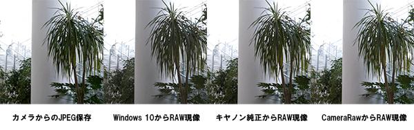 RAW現像結果の比較