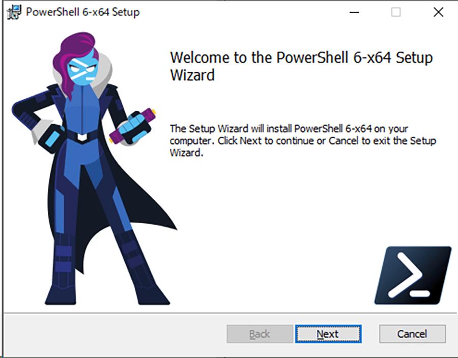 Setup Wizardで、[Next] ボタンをクリックする