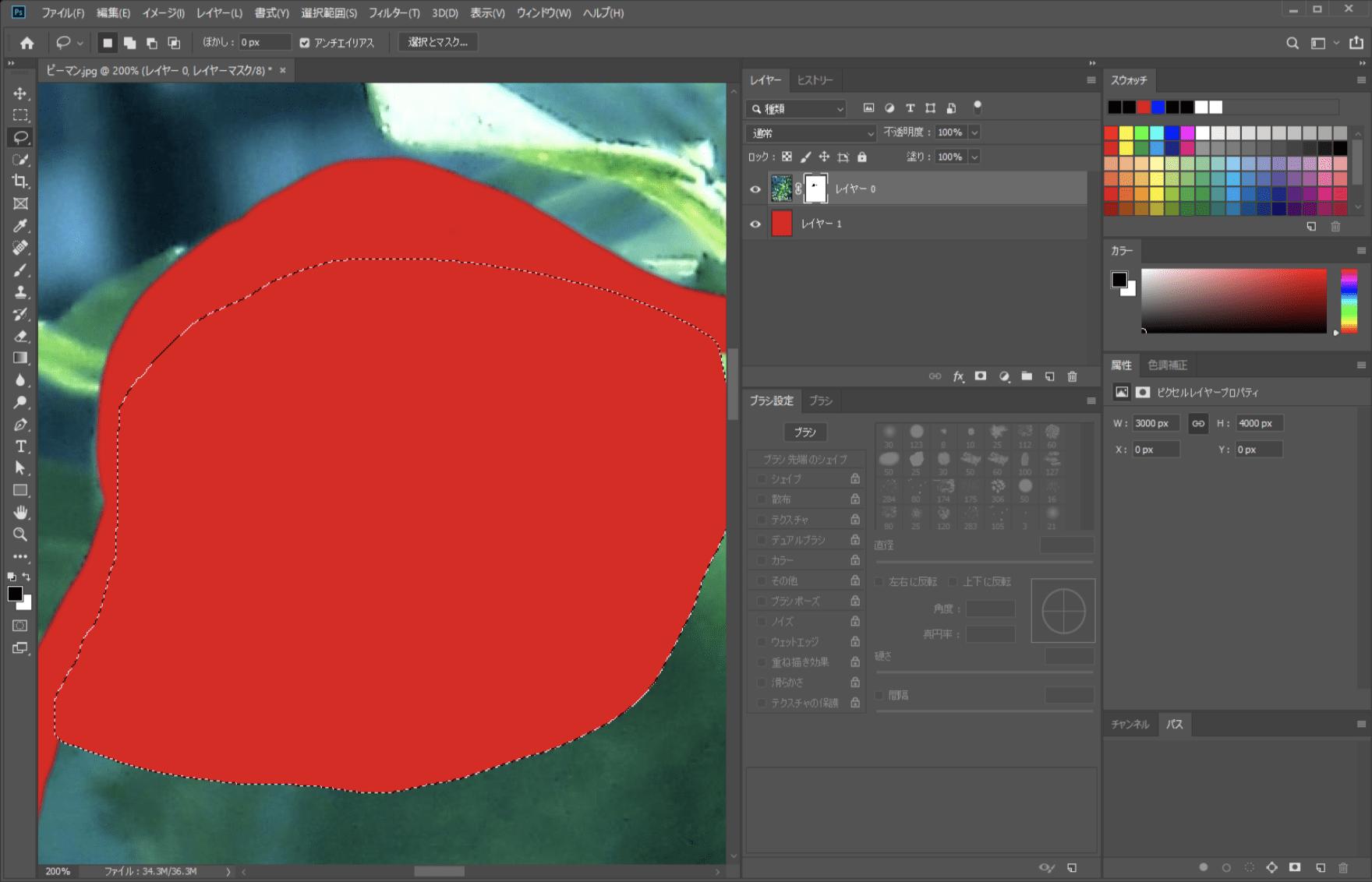 なげなわツールで選択範囲を作成して塗りつぶしました