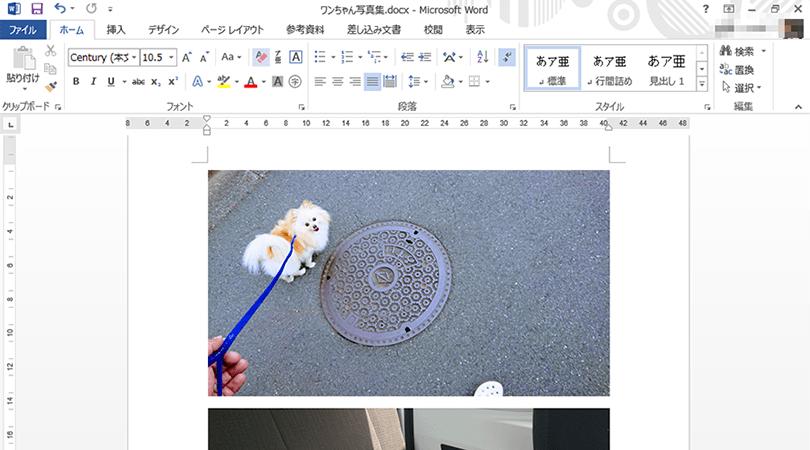 画像 ファイル サイズ 圧縮