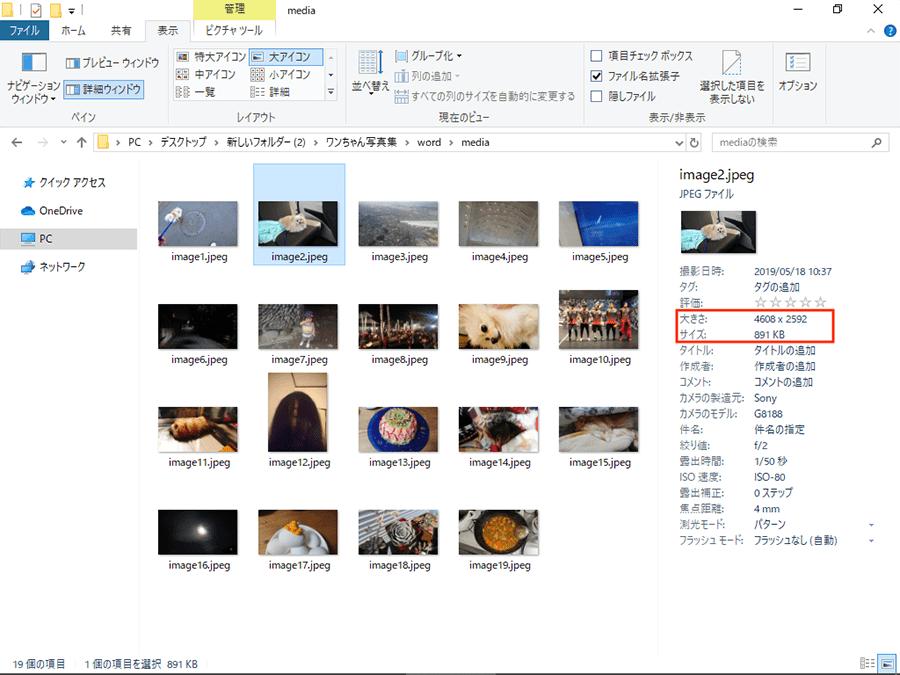 ファイルに含まれる画像を取り出すことができた