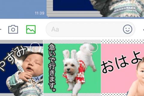 LINEスタンプの作り方。子どもやペットの写真を使ってパソコンで簡単に作ろう!のイメージ画像