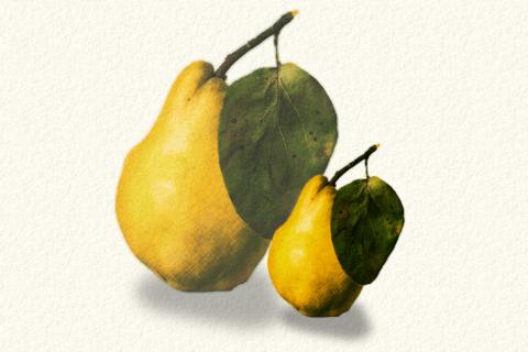 Photoshopのマウス操作で色鉛筆風の絵を描く方法のイメージ画像