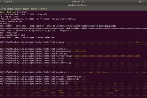 Ubuntuにpandasを導入する方法のイメージ画像