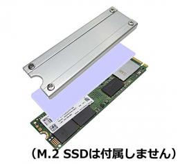 SS-M2S-HS02