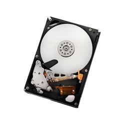 HUA722010CLA330 (1TB SATA300 7200)