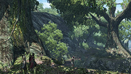 ドラゴンズドグマ オンライン スクリーンショット8