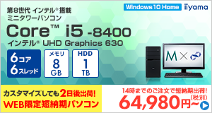 STYLE-M1B6-i5-UH-D [Windows 10 Home]64980