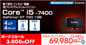 Miyabi-EJ3S-i5-IX [Windows 10 Home]