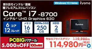 Miyabi-EJ5S-i7-UHVI [Windows 10 Home]114980