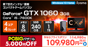 LEVEL-C117-i5K-RNJR [Windows 10 Home]109980