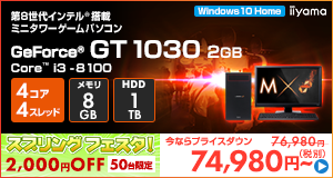 LEVEL-M037-i3-IN [Windows 10 Home]74980