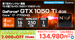 LEVEL-15FX088-i7-LXSVI [Windows 10 Home]134980