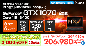 LEVEL-15FR100-i5-TNSVI [Windows 10 Home]206980