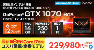 LEVEL-15FR100-i7K-TNRVI [Windows 10 Home]229980