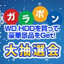 パソコン工房大阪日本橋店にて12月3日(日)にガラポン大抽選会を開催!
