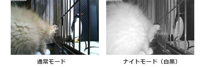 導入効果の所感 画像02