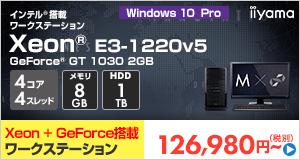 SOLUTION-MT5W-Xe3-GS [Windows 10 Pro]126,980
