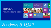 Windows 8.1 �Ƃ́H