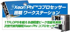 Xeon Phi���[�N�X�e�[�V����