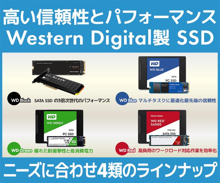 Western Digital(ウエスタンデジタル)製内蔵SSD